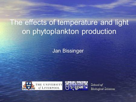 The effects of temperature and light on phytoplankton production Jan Bissinger S chool of B iological S ciences S chool of B iological S ciences.