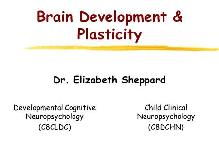 Brain Development & Plasticity Dr. Elizabeth Sheppard Developmental Cognitive Neuropsychology (C8CLDC) Child Clinical Neuropsychology (C8DCHN)