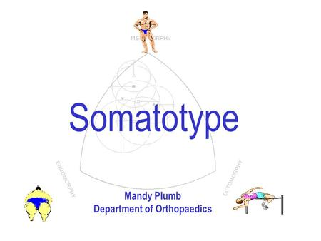 Arthur Stewart Somatotype Mandy Plumb Department of Orthopaedics.
