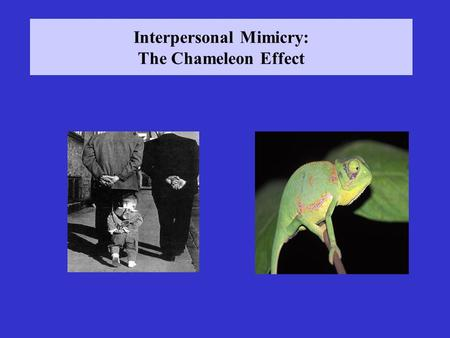 Interpersonal Mimicry: The Chameleon Effect. Lecture 6: Interpersonal Mimicry Iacoboni, M. (2009). Imitation, empathy, and mirror neurons. Annual Review.