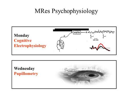 Monday Cognitive Electrophysiology Wednesday Pupillometry MRes Psychophysiology.