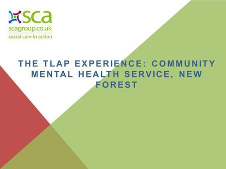 THE TLAP EXPERIENCE: COMMUNITY MENTAL HEALTH SERVICE, NEW FOREST.