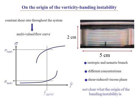 On the origin of the vorticity-banding instability 5 cm 2 cm constant shear rate throughout the system multi-valued flow curve isotropic and nematic branch.