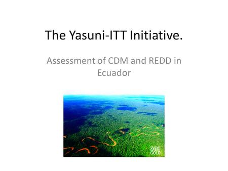 The Yasuni-ITT Initiative. Assessment of CDM and REDD in Ecuador.