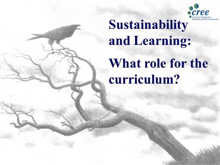 Sustainability and Learning: What role for the curriculum?