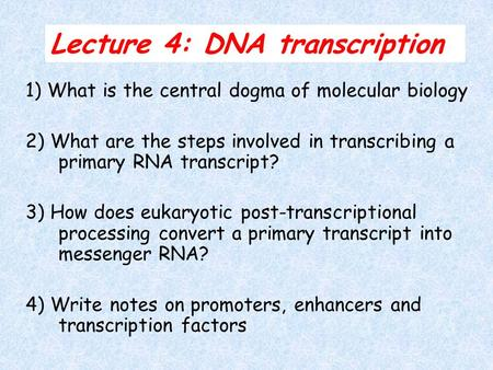 Lecture 4: DNA transcription 1) What is the central dogma of molecular biology 2) What are the steps involved in transcribing a primary RNA transcript?