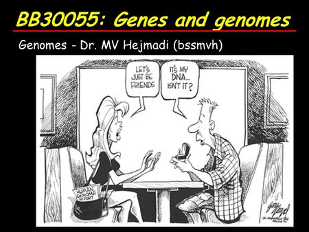 BB30055: Genes and genomes Genomes - Dr. MV Hejmadi (bssmvh)