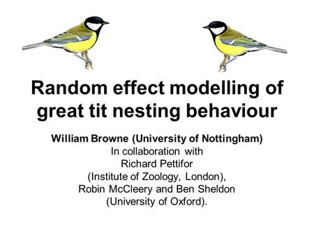 Random effect modelling of great tit nesting behaviour William Browne (University of Nottingham) In collaboration with Richard Pettifor (Institute of Zoology,