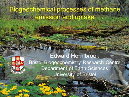 Biogeochemical processes of methane emission and uptake Edward Hornibrook Bristol Biogeochemistry Research Centre Department of Earth Sciences University.