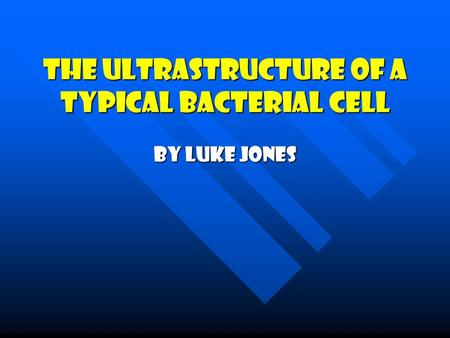 The Ultrastructure Of A Typical Bacterial Cell By Luke Jones.