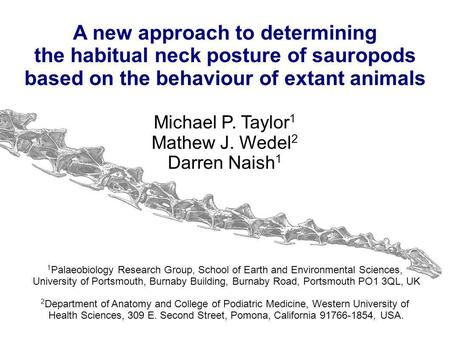 A new approach to determining the habitual neck posture of sauropods based on the behaviour of extant animals Michael P. Taylor 1 Mathew J. Wedel 2 Darren.
