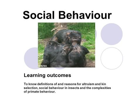 Social Behaviour Learning outcomes To know definitions of and reasons for altruism and kin selection, social behaviour in insects and the complexities.
