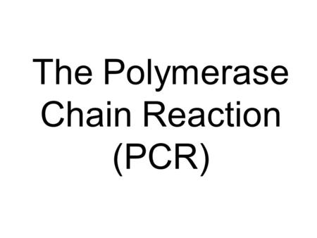 The Polymerase Chain Reaction (PCR). The problem! Maisy the research meerkat is pregnant, but whos the daddy? How can we find out?