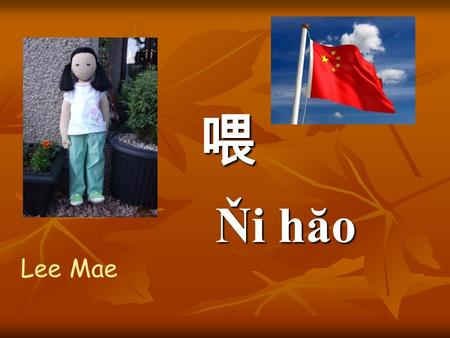 Ňi hăo Lee Mae Beijing Where are we now ?