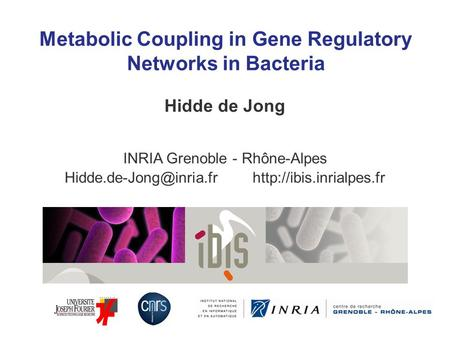 Metabolic Coupling in Gene Regulatory Networks in Bacteria Hidde de Jong INRIA Grenoble - Rhône-Alpes