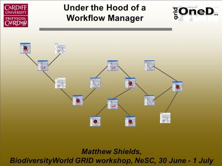 Under the Hood of a Workflow Manager Matthew Shields, BiodiversityWorld GRID workshop, NeSC, 30 June - 1 July T r a ai n.