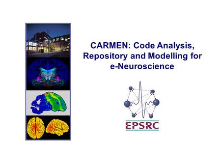 CARMEN: Code Analysis, Repository and Modelling for e-Neuroscience.