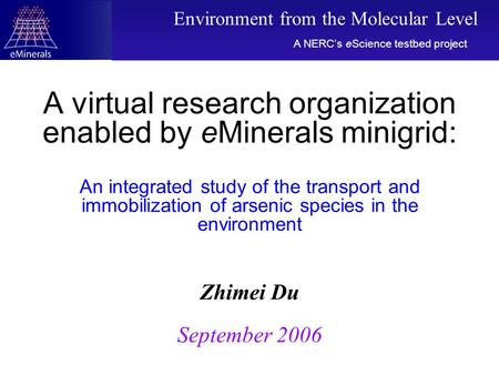 A virtual research organization enabled by eMinerals minigrid: An integrated study of the transport and immobilization of arsenic species in the environment.