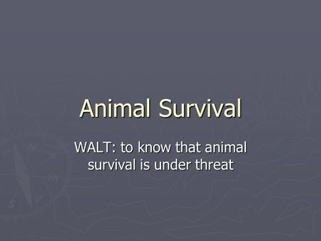Animal Survival WALT: to know that animal survival is under threat.