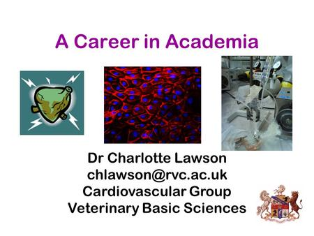 A Career in Academia Dr Charlotte Lawson Cardiovascular Group Veterinary Basic Sciences.