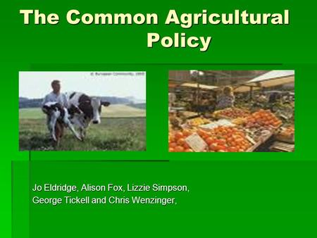 The Common Agricultural Policy Jo Eldridge, Alison Fox, Lizzie Simpson, George Tickell and Chris Wenzinger,