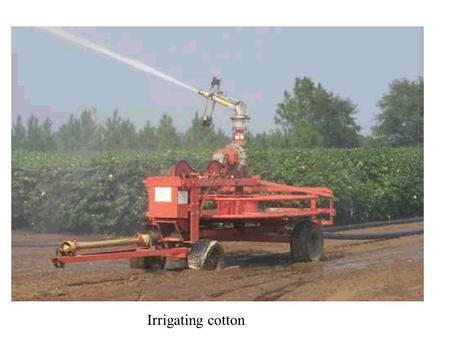 Irrigating cotton. Cable tow irrigation reel Irrigation pump.