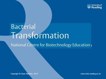 National Centre for Biotechnology Education www.ncbe.reading.ac.uk Bacterial Transformation Copyright © Dean Madden, 2013.