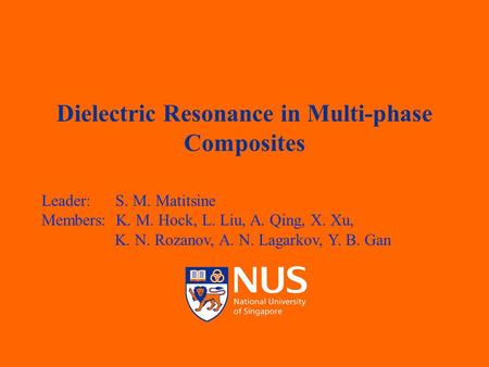 TEMASEK LABORATORIES Dielectric Resonance in Multi-phase Composites Leader: S. M. Matitsine Members: K. M. Hock, L. Liu, A. Qing, X. Xu, K. N. Rozanov,