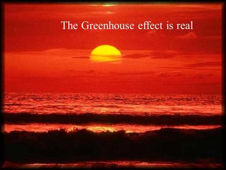The Greenhouse effect is real. Time is running out…for us and the creatures.