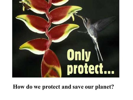 How do we protect and save our planet?