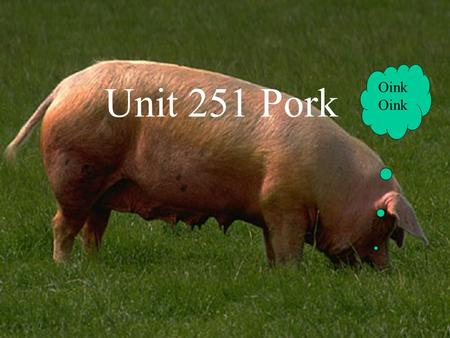 Unit 251 Pork Oink. Quality Points The following list indicates the quality points to look for when purchasing pork. Moist, firm and pale pink flesh.