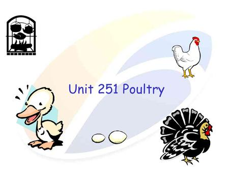 Unit 251 Poultry. Poultry is the collective term applied to domestic birds reared for human consumption and includes duck, goose, turkey and guinea fowl.