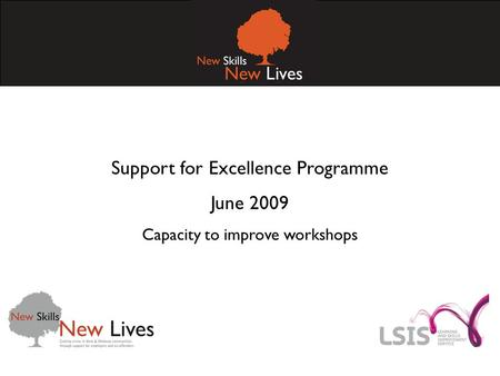 Support for Excellence Programme June 2009 Capacity to improve workshops.