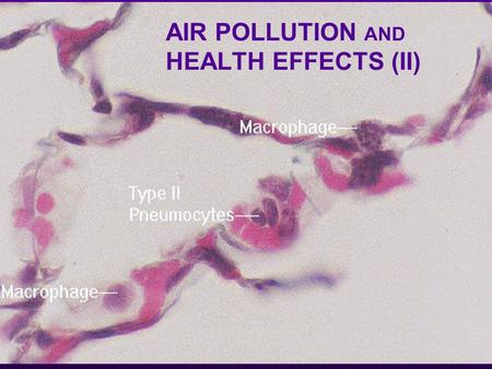 AIR POLLUTION AND HEALTH EFFECTS (II). PARTICULATE MATTER l Since the CAA(1956) a kind of complacency set in because smoke and SO 2 were very much reduced.