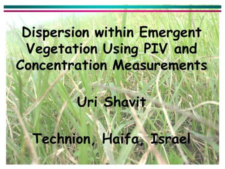 Dispersion within Emergent Vegetation Using PIV and Concentration Measurements Uri Shavit Technion, Haifa, Israel.