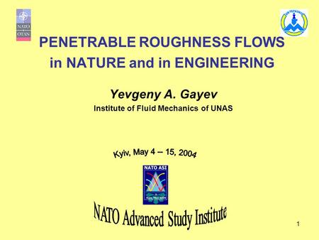 PENETRABLE ROUGHNESS FLOWS in NATURE and in ENGINEERING