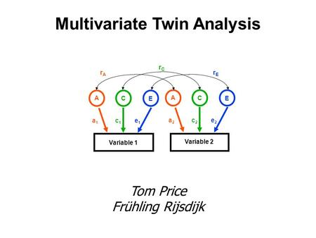 Multivariate Twin Analysis Tom Price Frühling Rijsdijk Variable 1 Variable 2 A C E a2a2 c2c2 e2e2 rArA rErE rCrC A C E a1a1 c1c1 e1e1.
