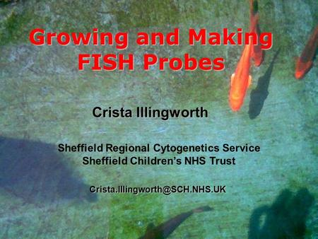 Growing and Making FISH Probes Crista Illingworth Sheffield Regional Cytogenetics Service Sheffield Childrens NHS Trust.
