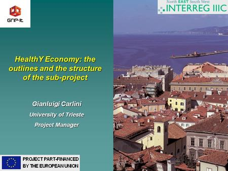 1 HealthY Economy: the outlines and the structure of the sub-project Gianluigi Carlini University of Trieste Project Manager.