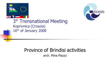 3° Trensnational Meeting Koprivnica (Croazia) 16 th of Jenuary 2008 Province of Brindisi activities arch. Mina Piazzo.