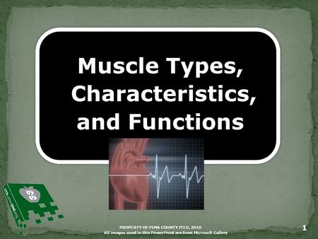 PROPERTY OF PIMA COUNTY JTED, 2010 1 Muscle Types, Characteristics, and Functions All images used in this PowerPoint are from Microsoft Gallery.