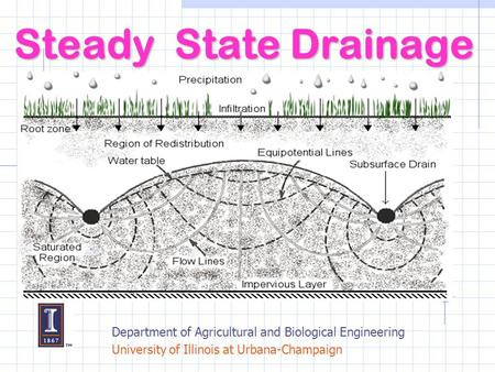 Steady State Drainage Department of Agricultural and Biological Engineering University of Illinois at Urbana-Champaign.