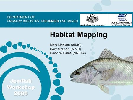 DEPARTMENT OF PRIMARY INDUSTRY, FISHERIES AND MINES Habitat Mapping Mark Meekan (AIMS) Cary McLean (AIMS) David Williams (NRETA)
