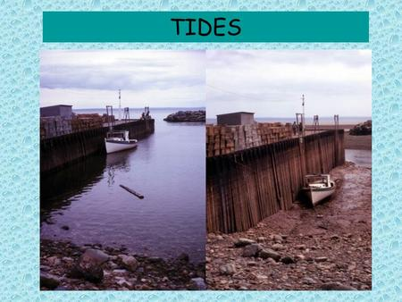 TIDES. Tides and Waves Regular rise & fall of sea that occurs: –1X day (24.8 hrs) OR 2X day (12.4 hrs) Crest (high tide), trough (low tide) Waves with.