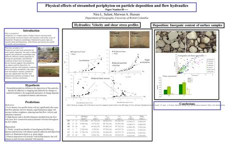 Nira L. Salant, Marwan A. Hassan Department of Geography, University of British Columbia Physical effects of streambed periphyton on particle deposition.