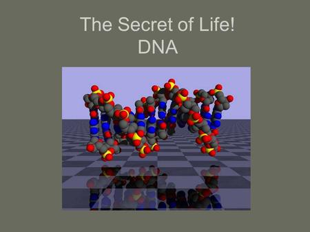 The Secret of Life! DNA. 2/4/20162 SOMETHING HAPPENS GENE PROTEIN.