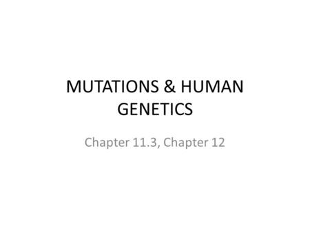 MUTATIONS & HUMAN GENETICS Chapter 11.3, Chapter 12.