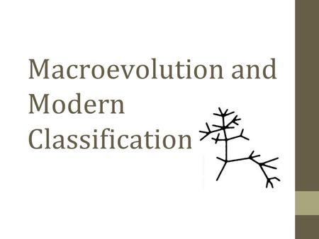 Macroevolution and Modern Classification. Microevolution Observing allele frequencies change in a single population over generations Macroevolution Evolution.