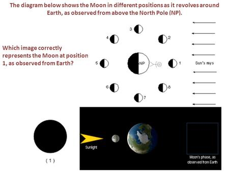 The diagram below shows the Moon in different positions as it revolves around Earth, as observed from above the North Pole (NP). Which image correctly.