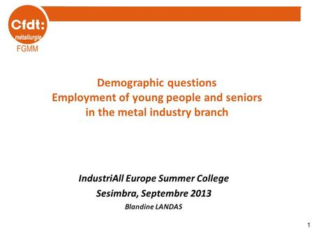 Demographic questions Employment of young people and seniors in the metal industry branch IndustriAll Europe Summer College Sesimbra, Septembre 2013 Blandine.